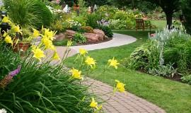 дорожки сада